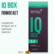 IQ Box / Интеллект